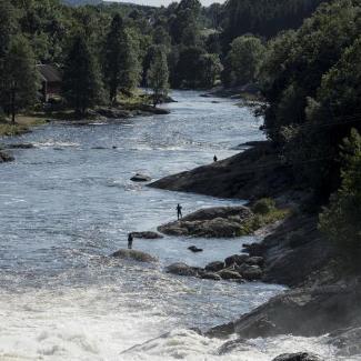 tovdalselva kart Laksefiske i Tovdalselva | Inatur.no
